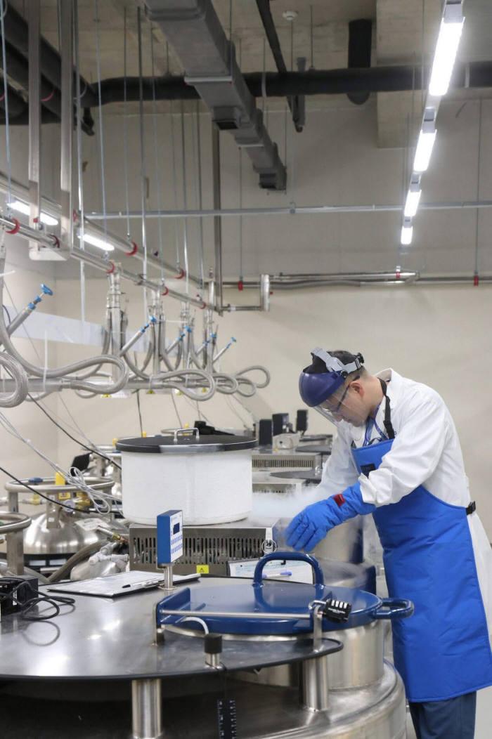 삼성서울병원 바이오뱅크 연구진이 액체질소저장고에서 인체유래물 출고를 준비하고 있다.
