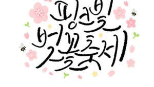 전국 벚꽃축제 6선