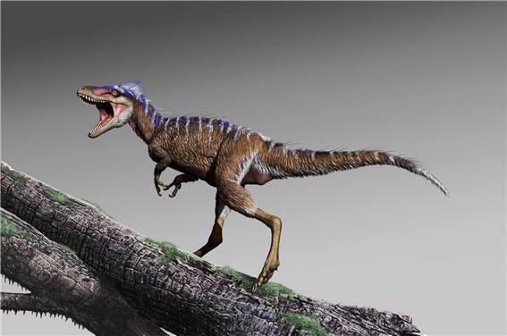 티라노사우루스(Tyrannosaurus)의 조상, 사슴만 한 모로스(Moros)의 복원도. (출처: http://www.scinews.com)