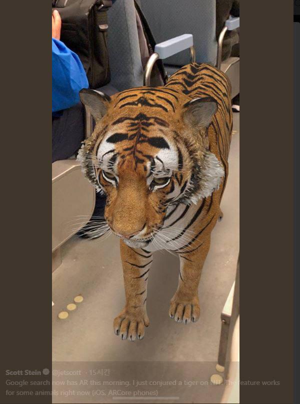 사무실에 호랑이를 바로 불러온다...구글 AR기능 추가