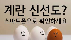스마트폰으로 계란 신선도 체크한다