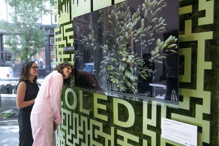 카페 올레드에서 아미라 카셈(오른쪽) 셰프 등이 팬톤이 선정한 올해의 여름 컬러 페퍼 스템 조형물 앞 LG 올레드 TV를 살펴보고 있다.