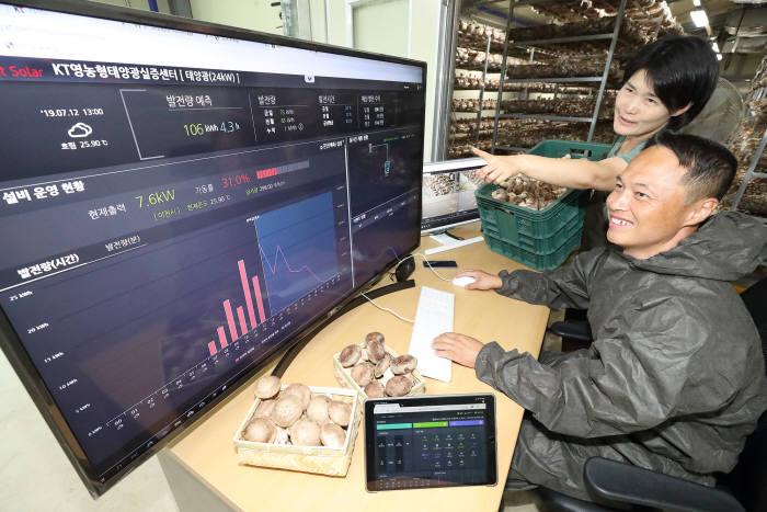 경기도 이천시 청운표고 영농태양광 실증센터에서 조해석(앞)씨와 서강화 씨가 솔루션을 통해 농장 현황을 살펴보고 있다.