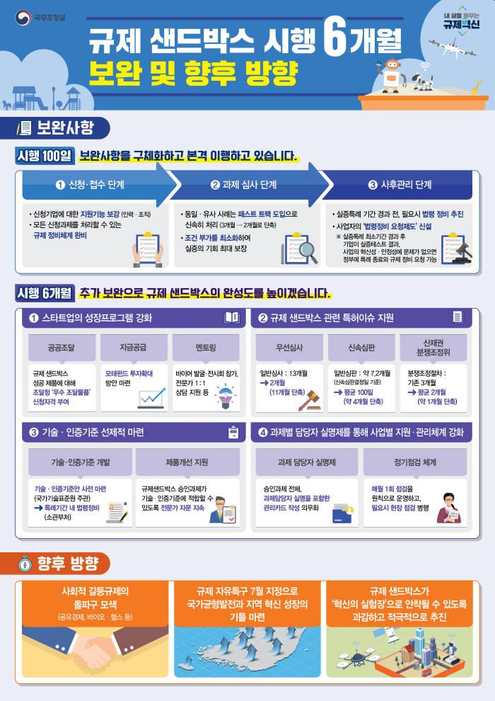 규제 샌드박스 보완 및 향후 방향