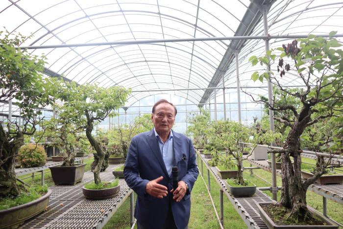 김동규 한창산업 대표가 노리매공원 내부 온실에서 키우는 매화 묘목 및 분재를 소개하고 있다.