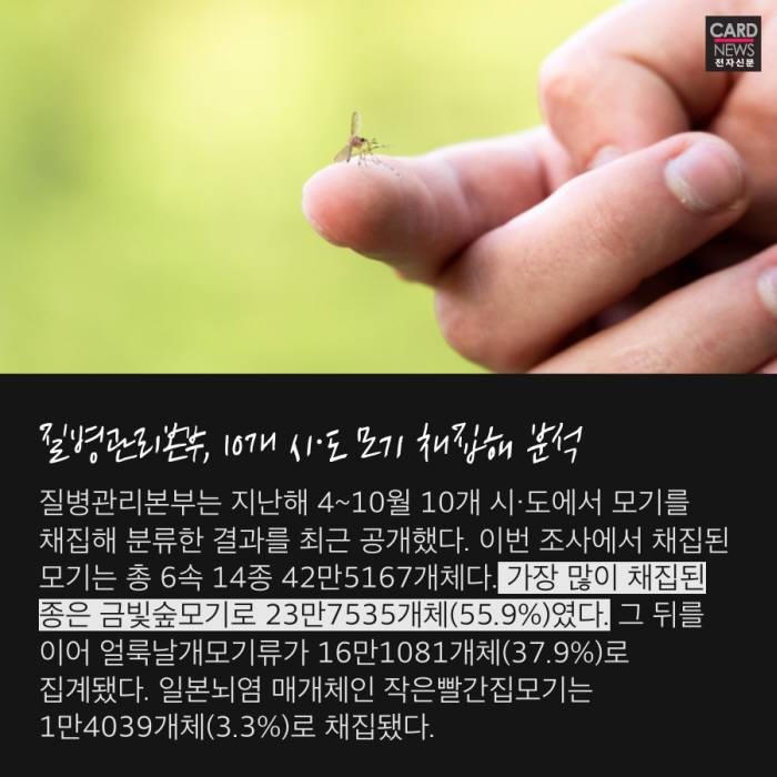 [카드뉴스]여름 불청객 '모기' 가장 많은 지역은
