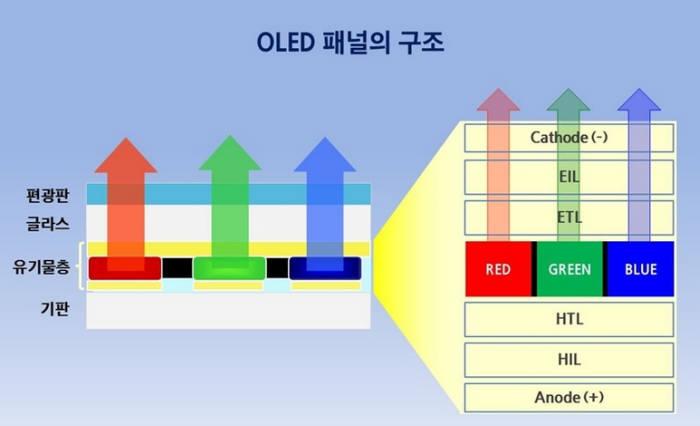 삼성 QD-OLED TV 출시하나? LG 올레드 TV와 맞짱?