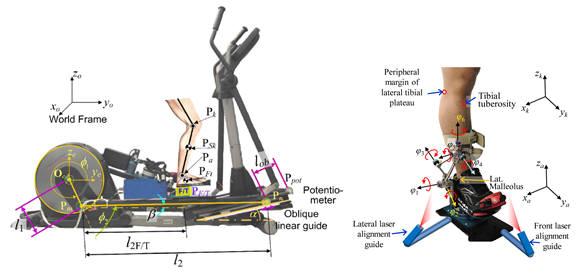 무릎 관절염 진단 및 재활훈련시스템 이미지.