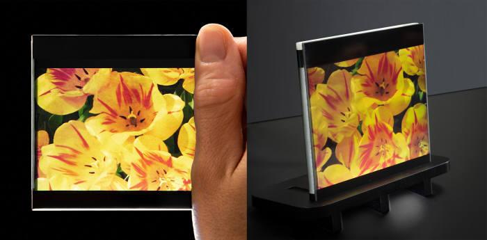 영국 스타트업 플렉스인에이블이 개발한 초슬림 베젤의 플라스틱LCD(OLCD). (사진=플렉스인에이블)