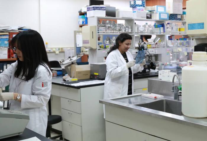지스트 생명노화연구소 연구원들이 노화 및 고령친화 원천기술 개발을 위한 실험을 하고 있다.