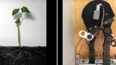 '식물 성장'에 아이디어 얻은 로봇 개발