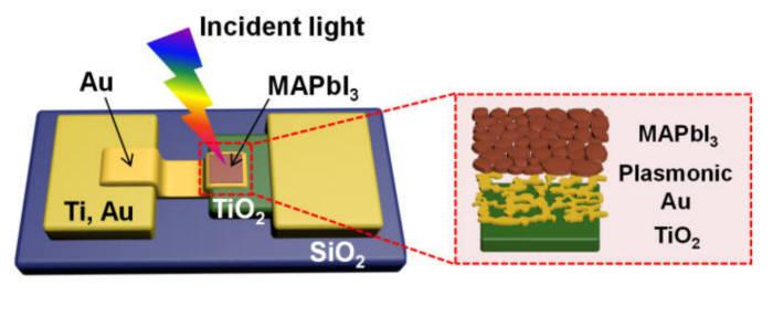 IBS가 개발한 페로브스카이트 기반 핫전자 태양전지 구조 (IBS 제공)