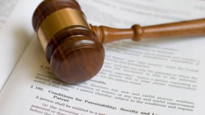 [IP강국, 생태계 혁신부터]<하>특허소송 전문성 높여야