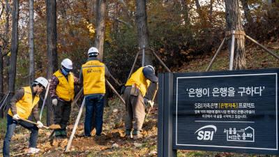 SBI저축銀, '은행저축프로젝트' 암은행나무 이식사업 진행