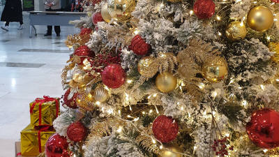 {htmlspecialchars([기자의 일상]크리스마스에는 축복을)}