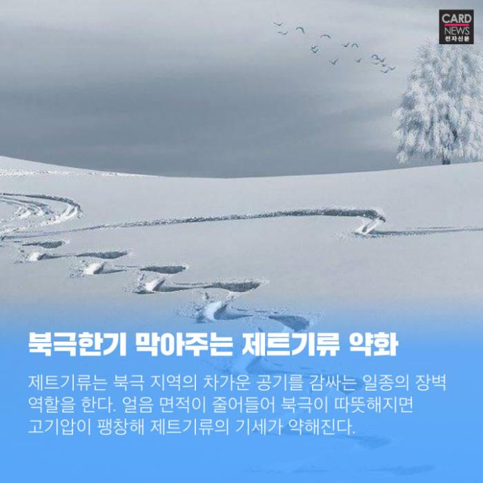 [카드뉴스]겨울 불청객 '한파' 올해 더 자주 찾아온다