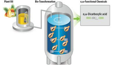 바이오플라스틱 대량생산 해법 찾았다...생명연 '세바식산' 생산공정 개발