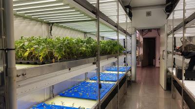 솔트웨어, 농업에 ICT 결합한 스마트팜 사업 중동시장에서 꽃피운다