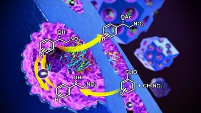 의약품 대량생산 길 열었다…포스텍, 정밀화학품 생산공정 단순화