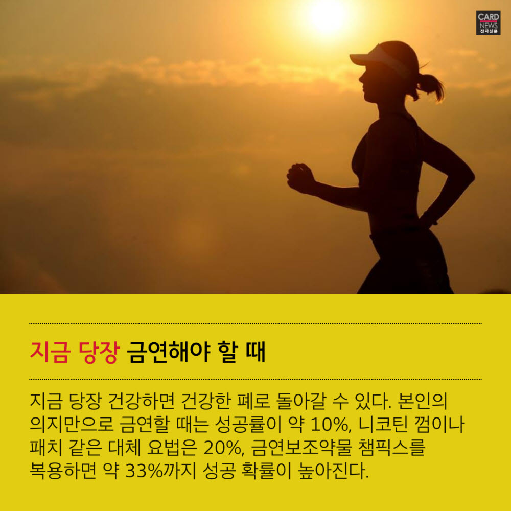 [카드뉴스]40년 골초도 금연하면 폐 기능 회복