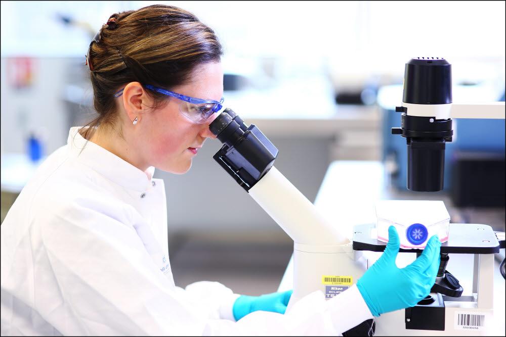 [이슈분석]'코로나19' 장기화 되나...백신 개발에 글로벌 제약사 뛰어들어