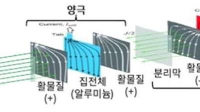 """""""그룹 위기 때마다 매물로""""…M&A시장서 주목받는 '동박'"""
