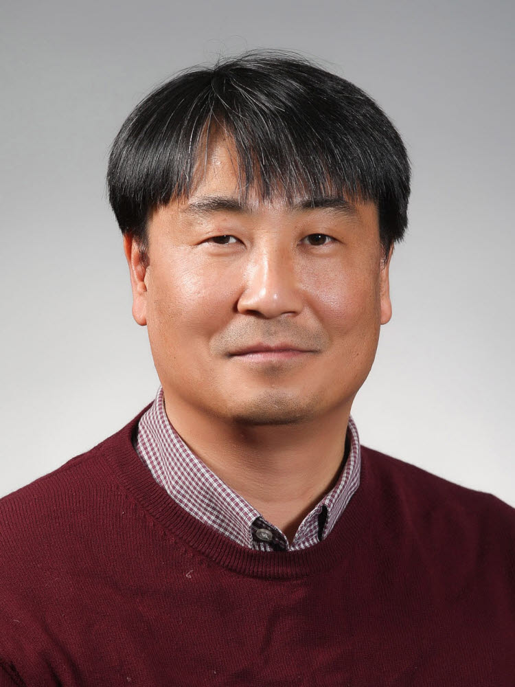 Lee Seung-ryul Head of National Geology Research Division, Korea Institute of Geoscience and Mineral Resources (President of Baekdu Oxidation Research Institute)