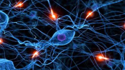 '기계학습'으로 진화…스스로 '생각하는 AI' 성큼