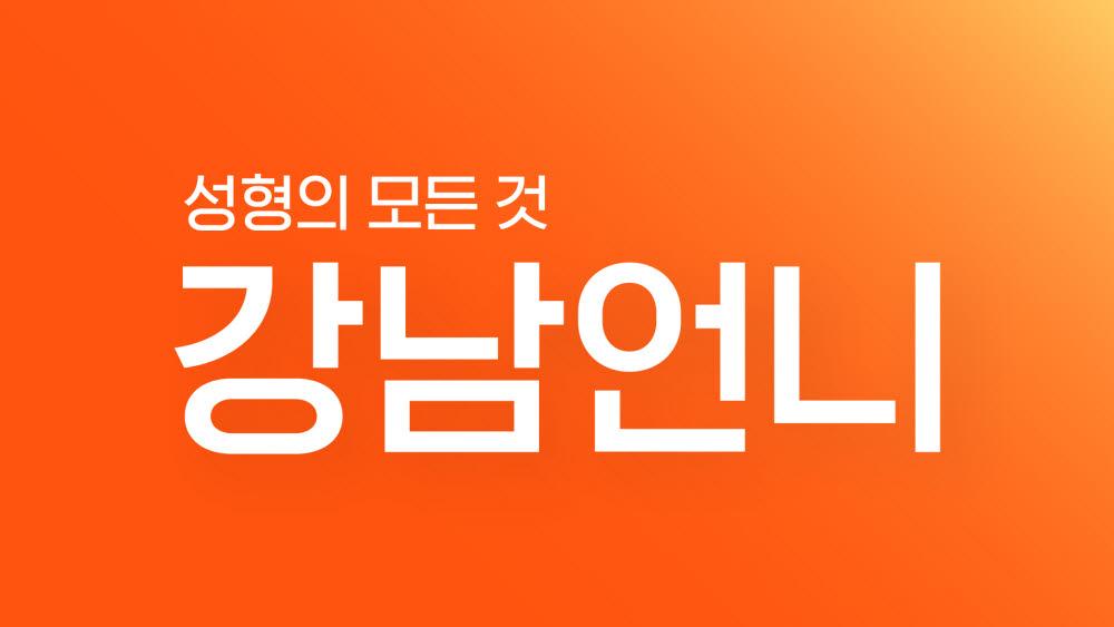 미용의료 플랫폼 '강남언니', 185억원 시리즈B 투자 유치