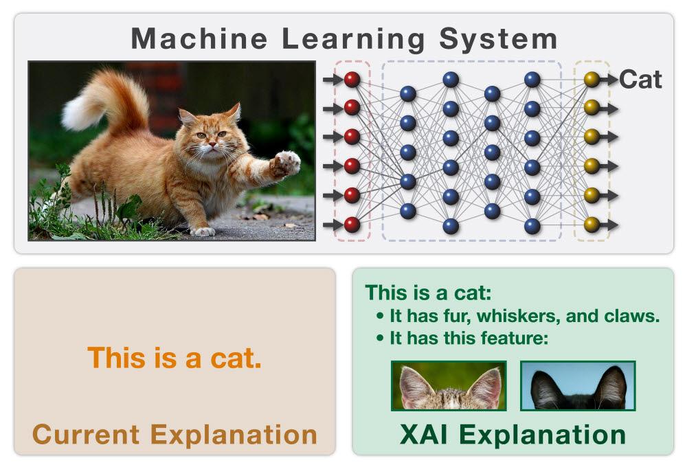 XAI와 기존 기술의 차이. XAI는 기존과 달리 결과를 도출하는 과정에서 살핀 근거들을 함께 제시할 수 있다. 출처: DARPA