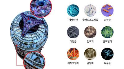 서울바이오시스, UV-LED 하이센스·하이얼 세탁기에 공급