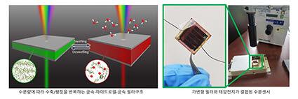 포스텍과 카이스트 공동연구팀이 키토산 기반 하이드로겔을 이용한 금속-하이드로겔-금속 공진기 구조를 이용해 가변형 컬러 필터를 개발하고, 이를 태양전지와 결합해 자가발전 수분센서를 구현하는데 성공했다. 사진은 연구논문 이미지.