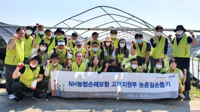 NH농협손보 고객지원부문 임직원, 농촌 일손돕기 봉사활동