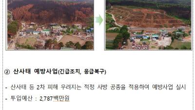 산림청, 700억 투입 울주·안동·고성 산불 피해지역 복구