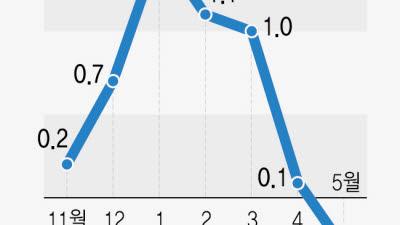 코로나19·유가 급락, 5월 소비자물가 '마이너스'…재난지원금 효과, 6월 통계부터