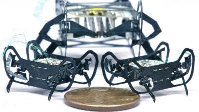 '1센트'보다 작은 초소형 로봇 개발