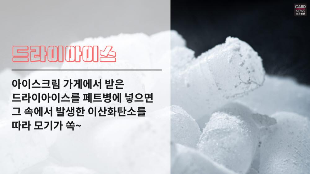 [카드뉴스]돌아온 불청객 '모기'…제발 사라져줘