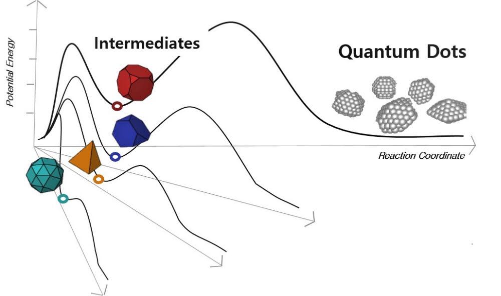양자점 성장 중간체로 형성되는 초미세 중간체들을 보여주는 에너지 모식도