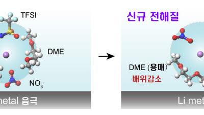 KAIST, 전해액 사용량 4배 줄인 고성능 리튬-황 전지 개발