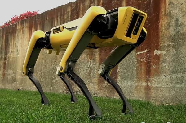 보스턴다이내믹스의 로봇개 스팟. <사진=보스턴다이내믹스>