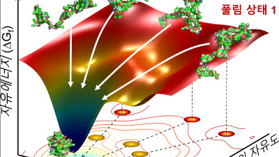 KAIST, 단백질 신약 개발 토대 마련...'접힘 과정' 최초 관측