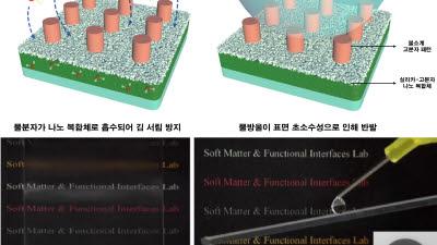 포스텍, 김 서림 막는 나노코팅 기술 개발