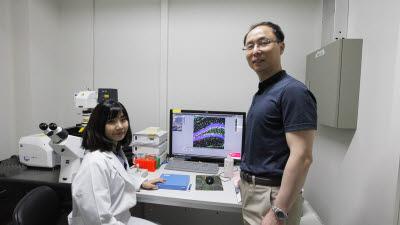 [포스트코로나 이끌 DGIST 연구성과]<1>뇌질환 치료제 후보물질 개발