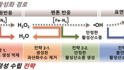 GIST, 수소연료전지용 비귀금속계 촉매 비활성화 메커니즘 규명