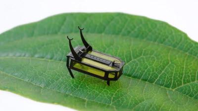'알코올'로 움직이는 곤충 로봇 개발