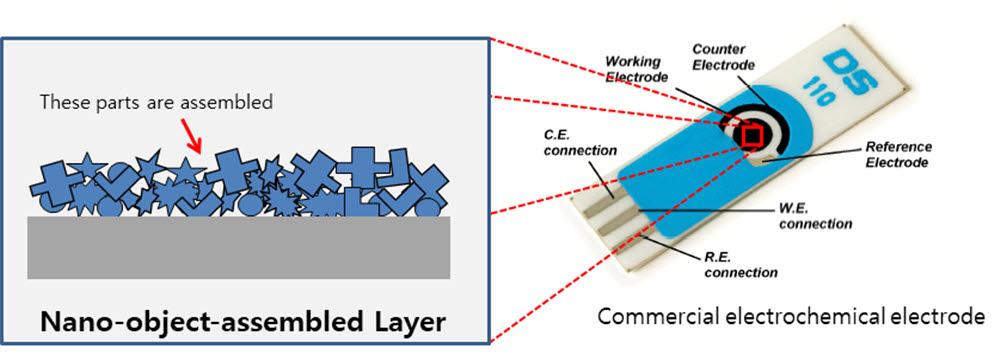 전기화학식 나노바이오센서의 표면에 조립된 나노물체조립층의 모식도