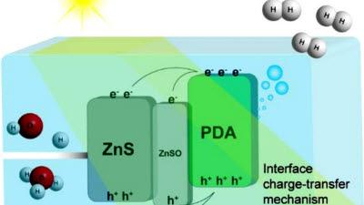태양광으로 수소 만든다…생체고분자 기반 광촉매 개발