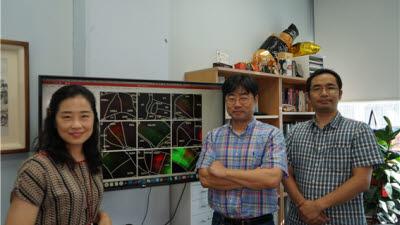 한국뇌연구원, 후두정피질과 뇌영역사이 상호신경회로 체계 발견