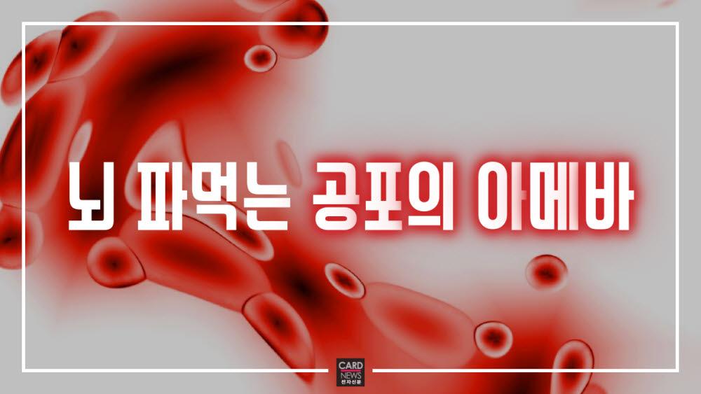 [카드뉴스]뇌 파먹는 '공포의 아메바'