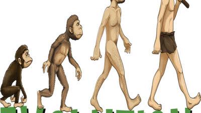 코로나19와 진화론